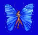 BUTTERFLY LOVER, BLUE – Edition 100 x 100cm – 1890 CHF